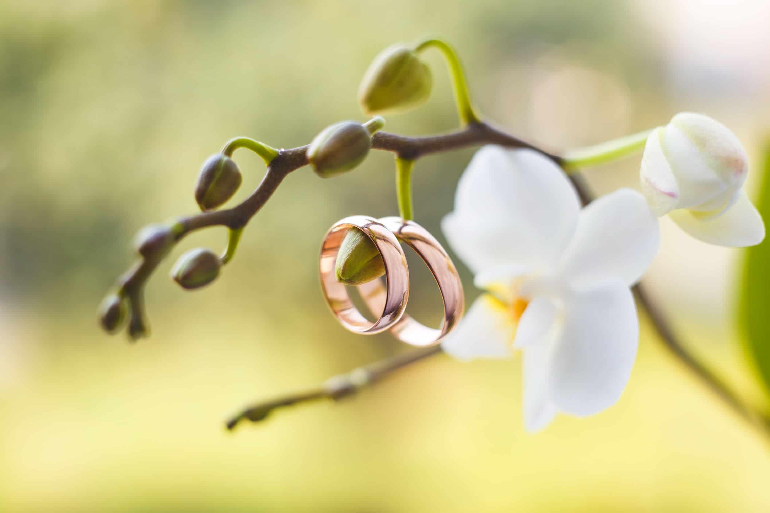 choix des bijoux de mariage : en fonction de l'écrin...